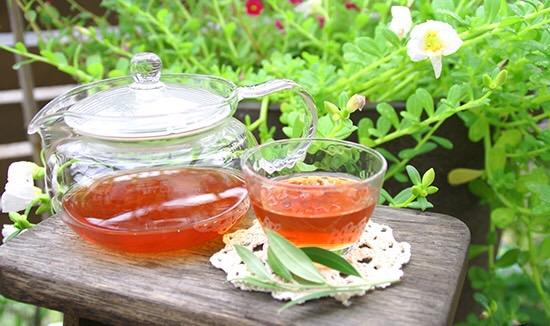 ごぼう茶2